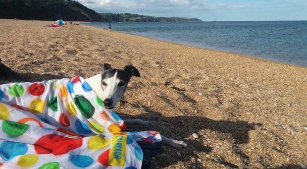 Strete Gate Beach, South Devon
